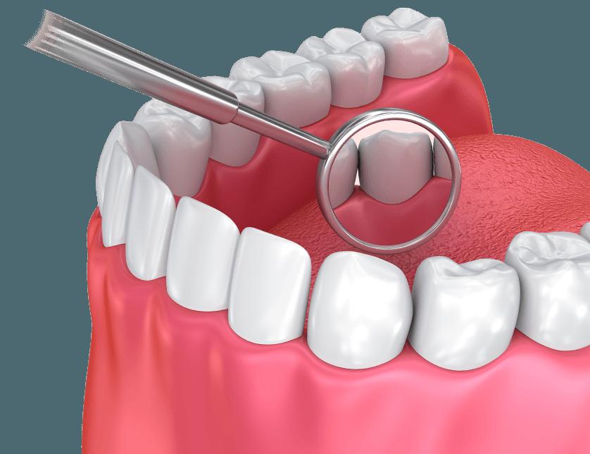 Wellness Dentistry